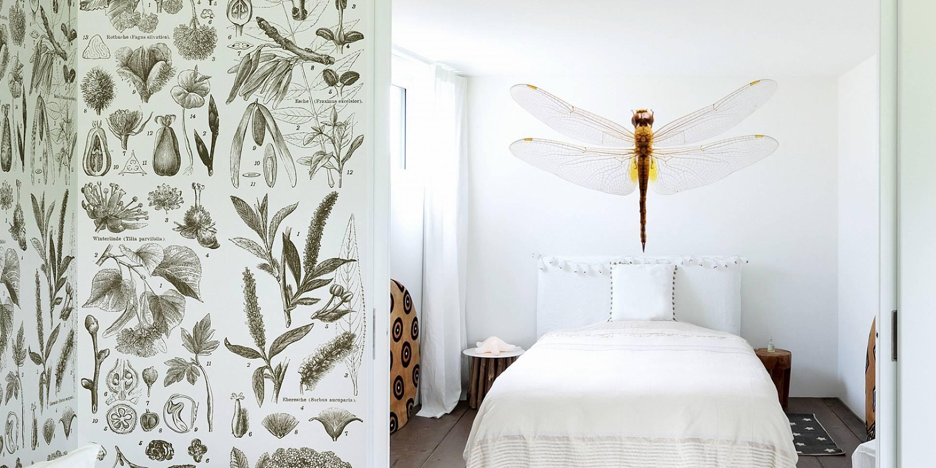 Haal vissen, vogels, vlinders en natuurlijk dino's in huis met ...