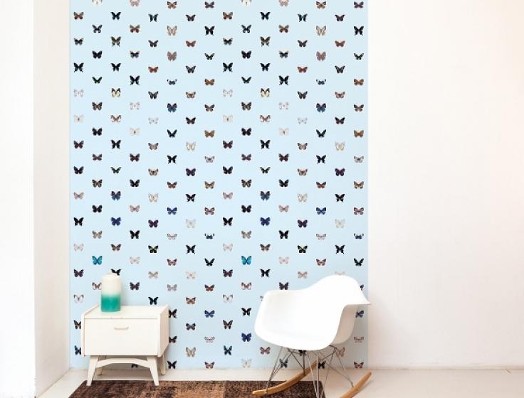 Vlinders op een lichtblauwe achtergrond behang op rol for Wat kost een rol behang