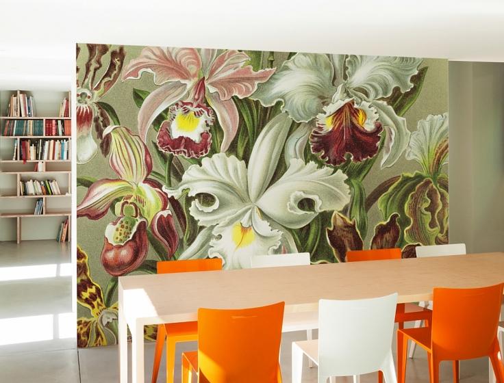 Behang Prints Opvallend : Orchideeën van ernst heackel behang op maat naturalis unlimited