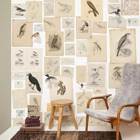 Behang op maat naturalis unlimited behang muurposters for Behang per m2
